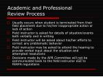 academic and professional review process