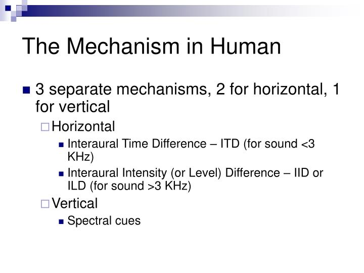 The Mechanism in Human