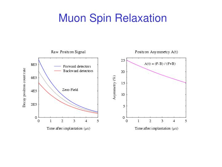 Muon Spin Relaxation