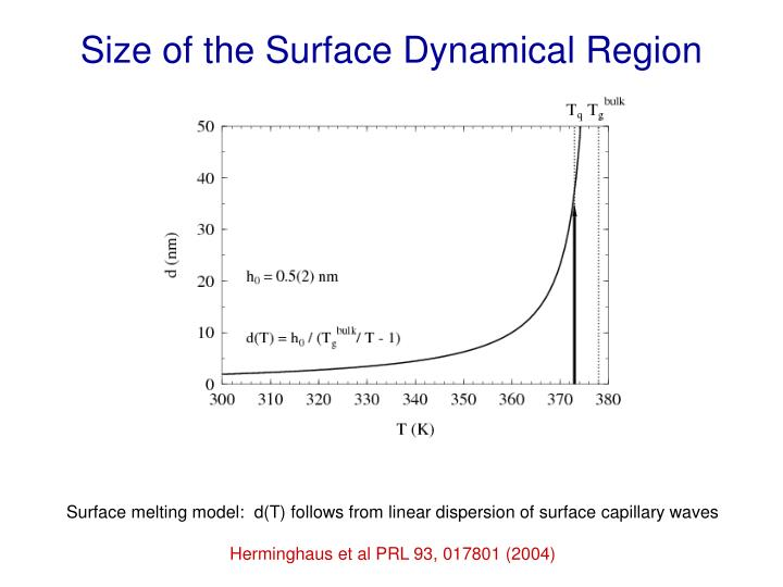 Size of the Surface Dynamical Region