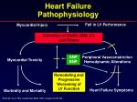 heart failure pathophysiology2