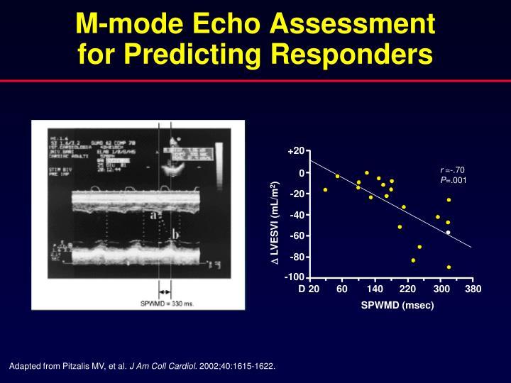 M-mode Echo Assessment
