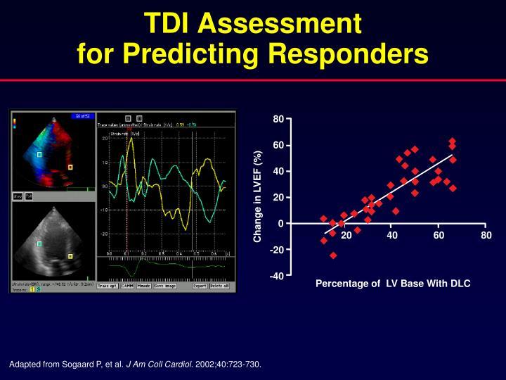 TDI Assessment