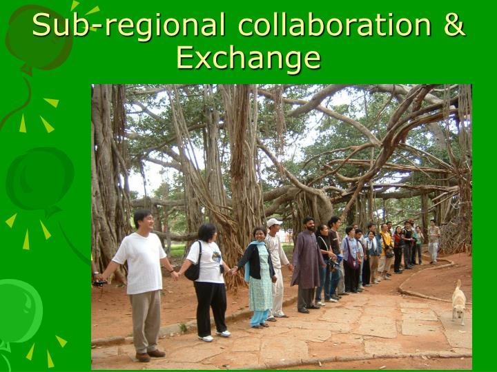 Sub-regional collaboration & Exchange