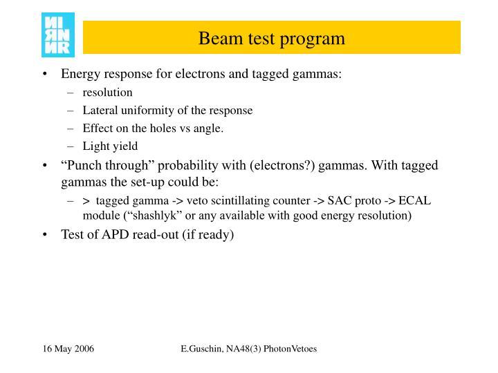 Beam test program