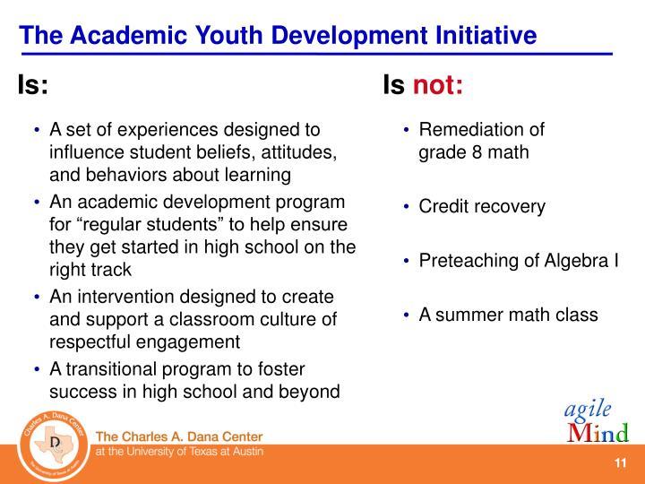 The Academic Youth Development Initiative
