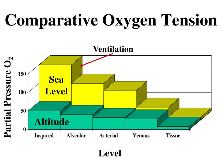 Comparative Oxygen Tension