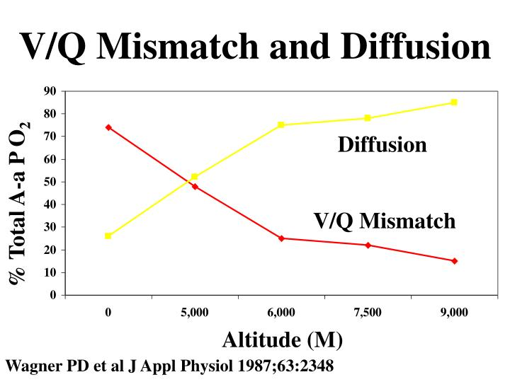 V/Q Mismatch and Diffusion