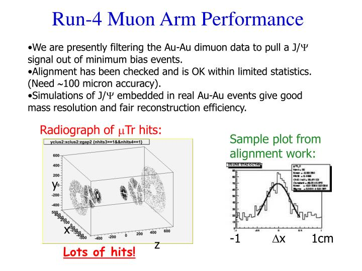 Run-4 Muon Arm Performance