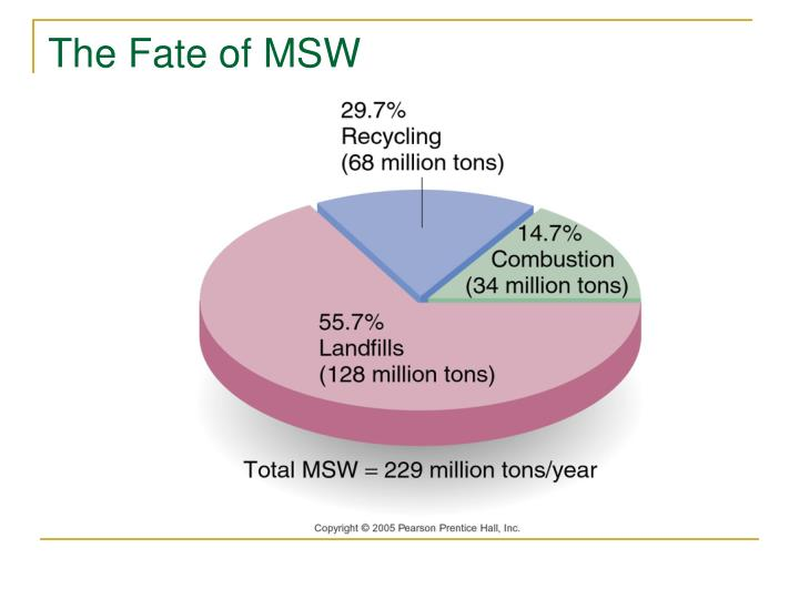 The Fate of MSW