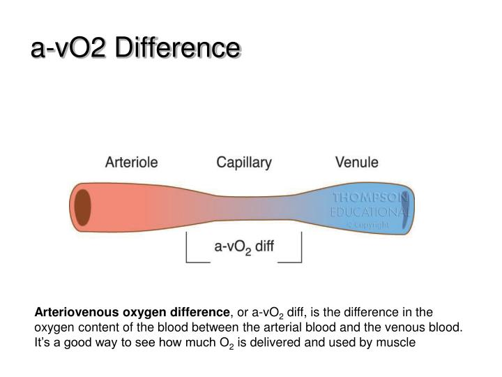 a-vO2 Difference