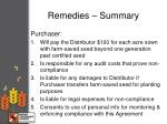 remedies summary