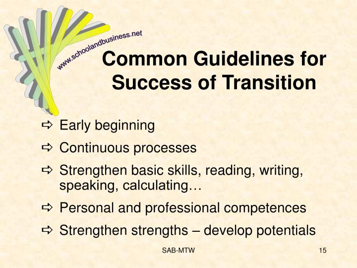Common Guidelines for Success of Transition
