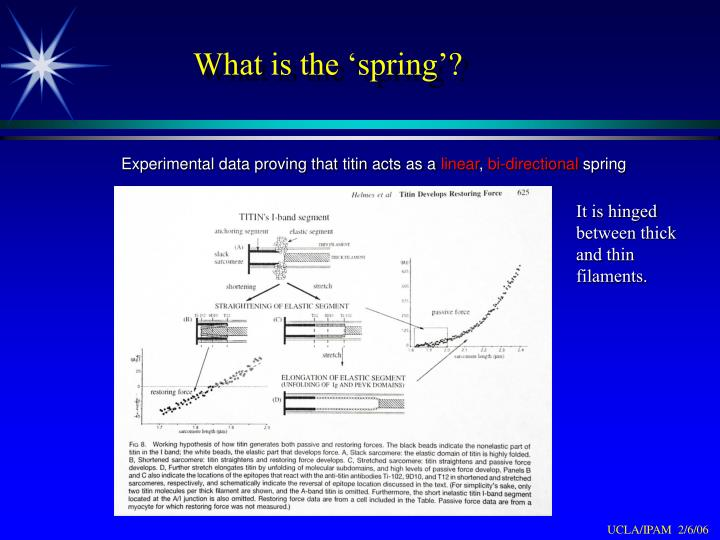 What is the 'spring'?