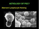 aberrant lymphocyte homing