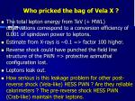 who pricked the bag of vela x