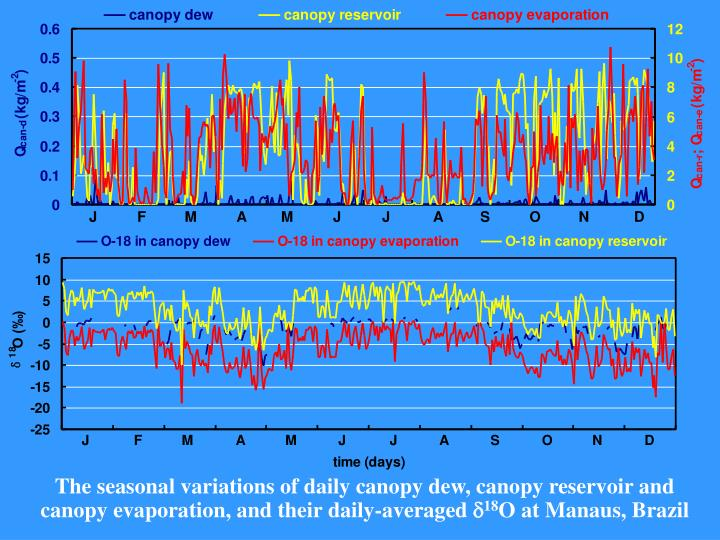 The seasonal variations of daily canopy dew, canopy reservoir and canopy evaporation, and their daily-averaged