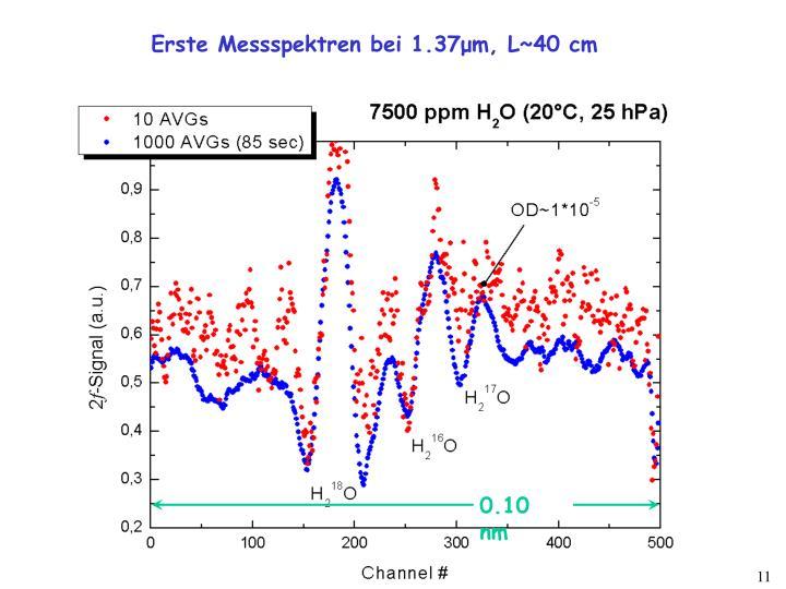 Erste Messspektren bei 1.37
