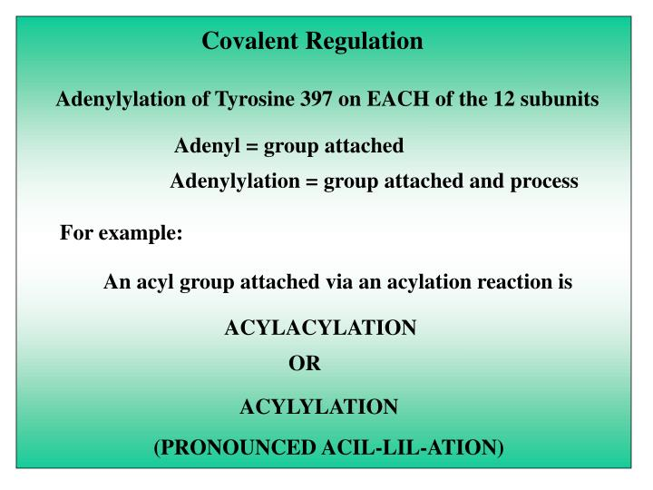 Covalent Regulation