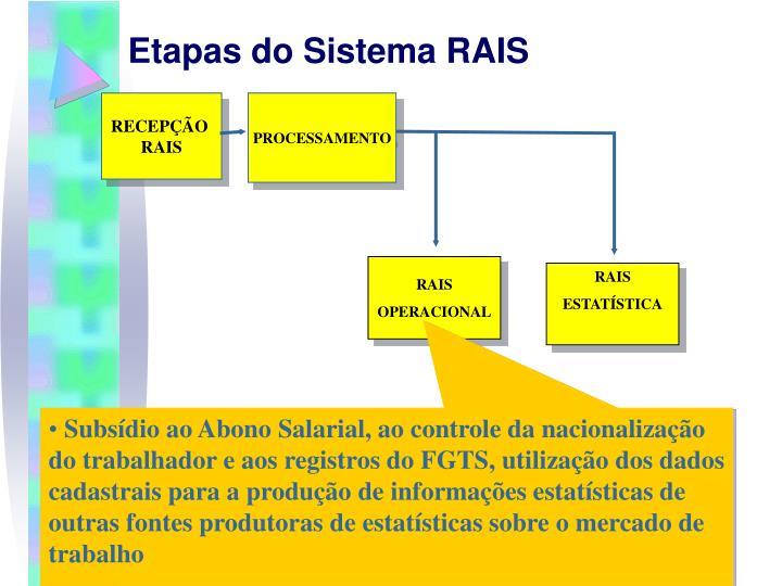 Etapas do Sistema RAIS