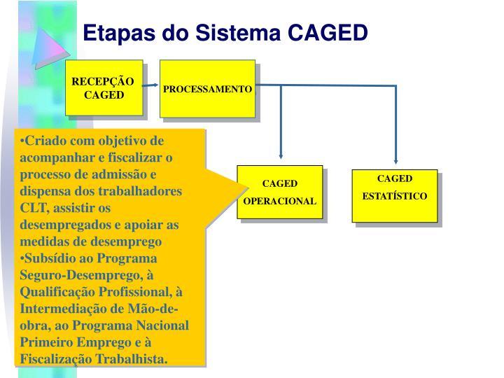 Etapas do Sistema CAGED