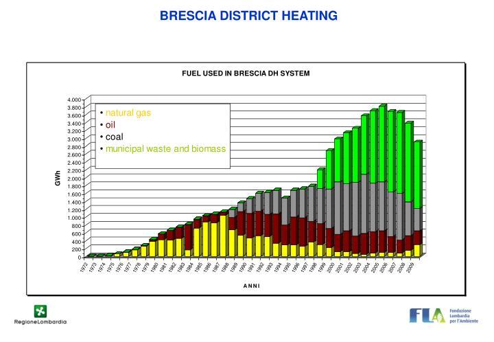 BRESCIA DISTRICT HEATING