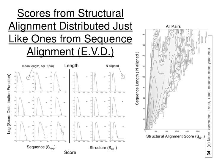 Scores from Structural Alignment Distributed Just Like Ones from Sequence Alignment (E.V.D.)