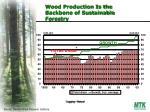 wood production is the backbone of sustainable forestry