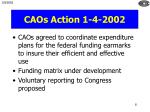 caos action 1 4 2002