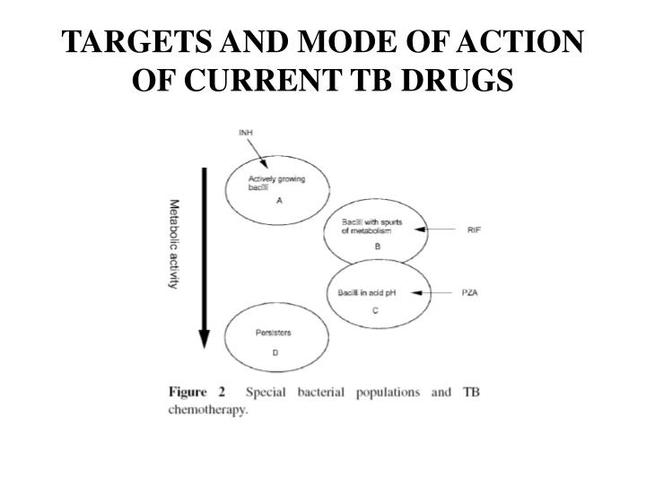 TARGETS AND MODE OF ACTION OF CURRENT TB DRUGS