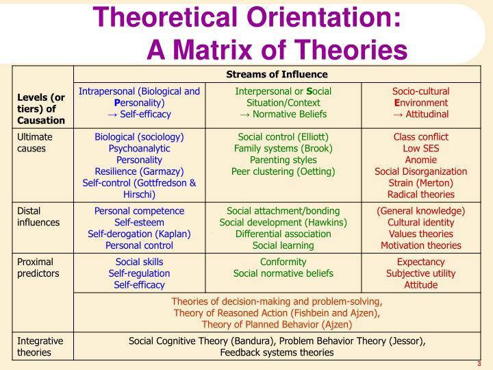 Theoretical Orientation: