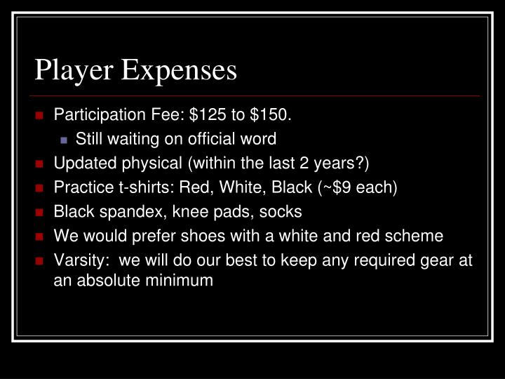 Player Expenses