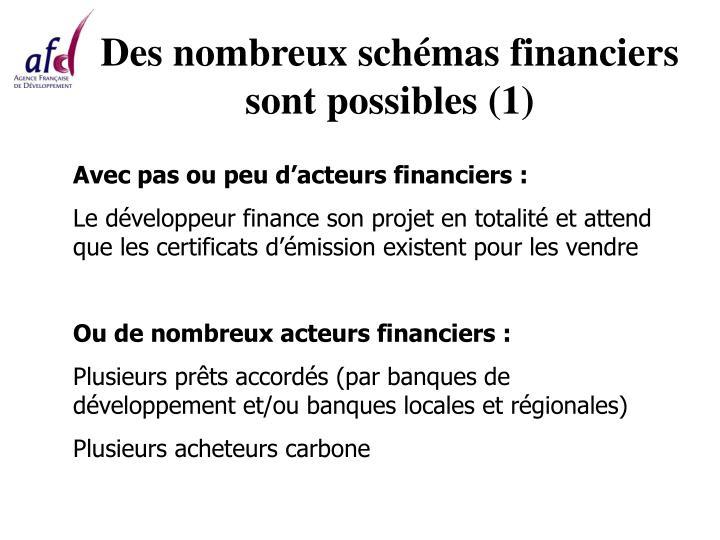 Des nombreux schémas financiers sont possibles (1)