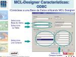 mcl designer caracter sticas odbc2