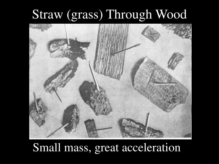 Straw (grass) Through Wood