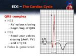 ecg the cardiac cycle3