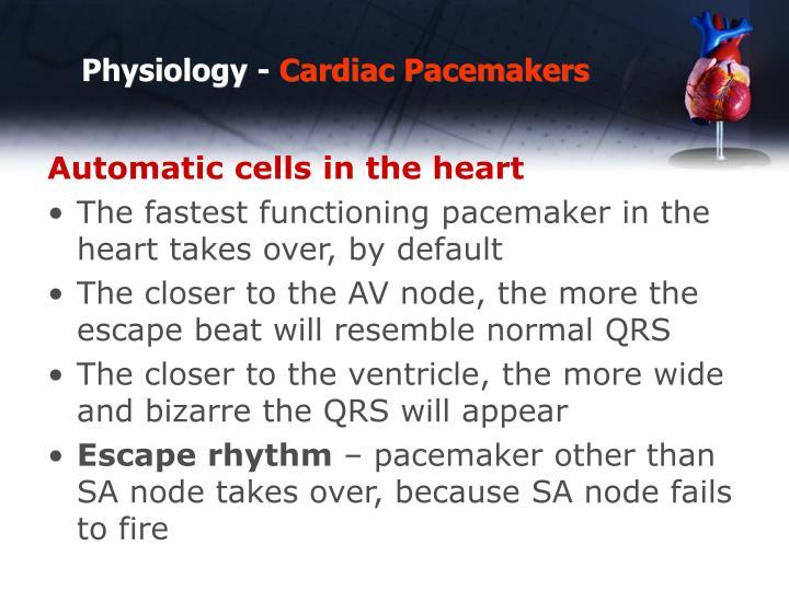 Physiology -