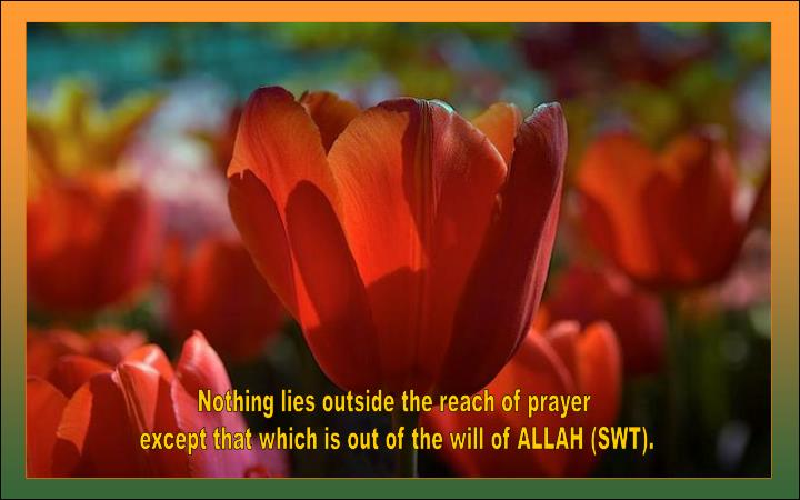 Nothing lies outside the reach of prayer