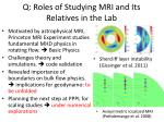 q roles of studying mri and its relatives in the lab