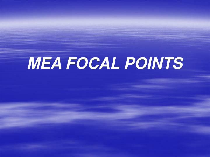 MEA FOCAL POINTS