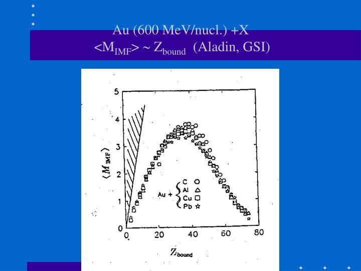 Au (600 MeV/nucl.) +X