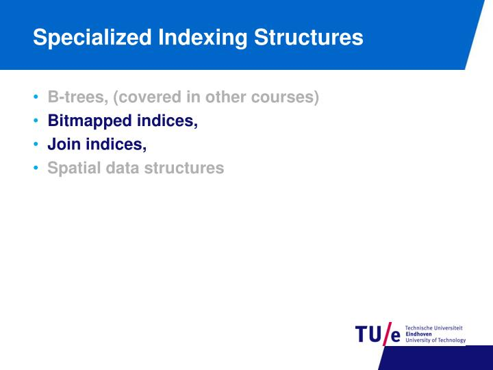 Specialized Indexing Structures