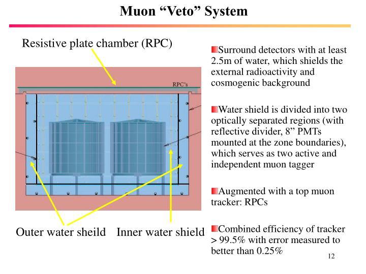 """Muon """"Veto"""" System"""
