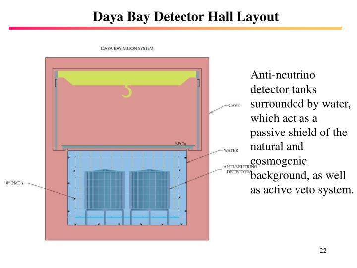 Daya Bay Detector Hall Layout