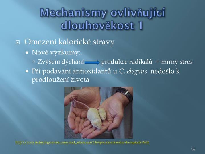 Mechanismy ovlivňující dlouhověkost 1