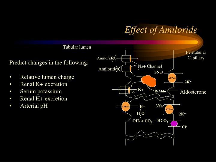 Effect of Amiloride