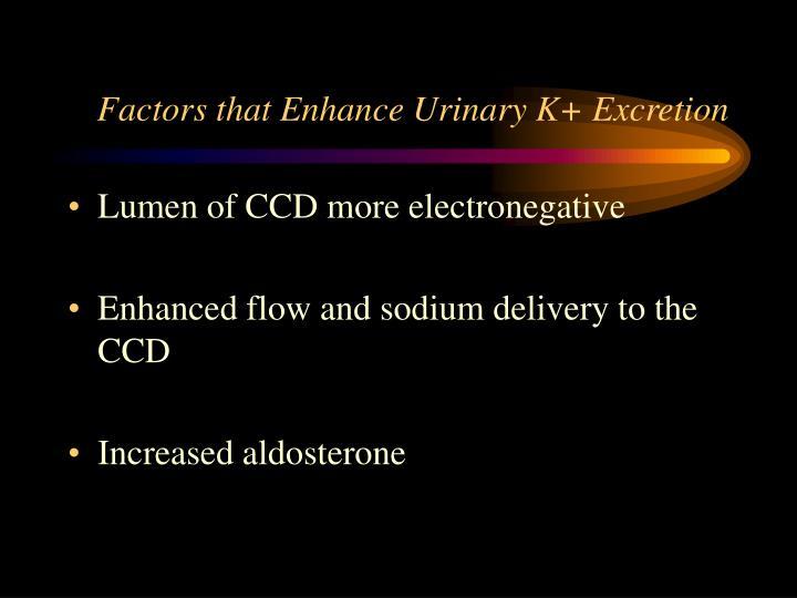 Factors that Enhance Urinary K+ Excretion