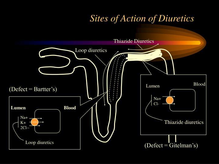 Sites of Action of Diuretics