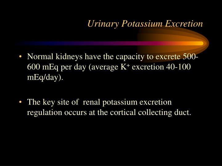 Urinary Potassium Excretion