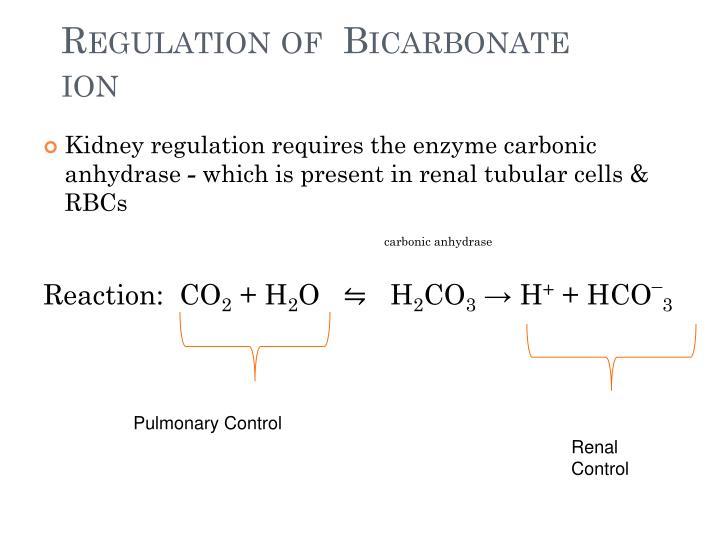 Regulation of  Bicarbonate ion